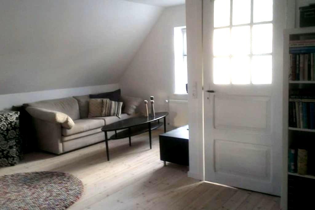 Lys lejlighed, til forretningsrejsende - pendler - Aabenraa - Apartment