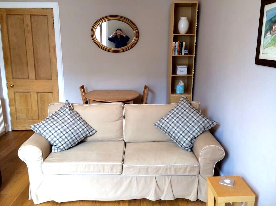 Central, comfortable 1BD Apartment - Edinburgh - Apartment