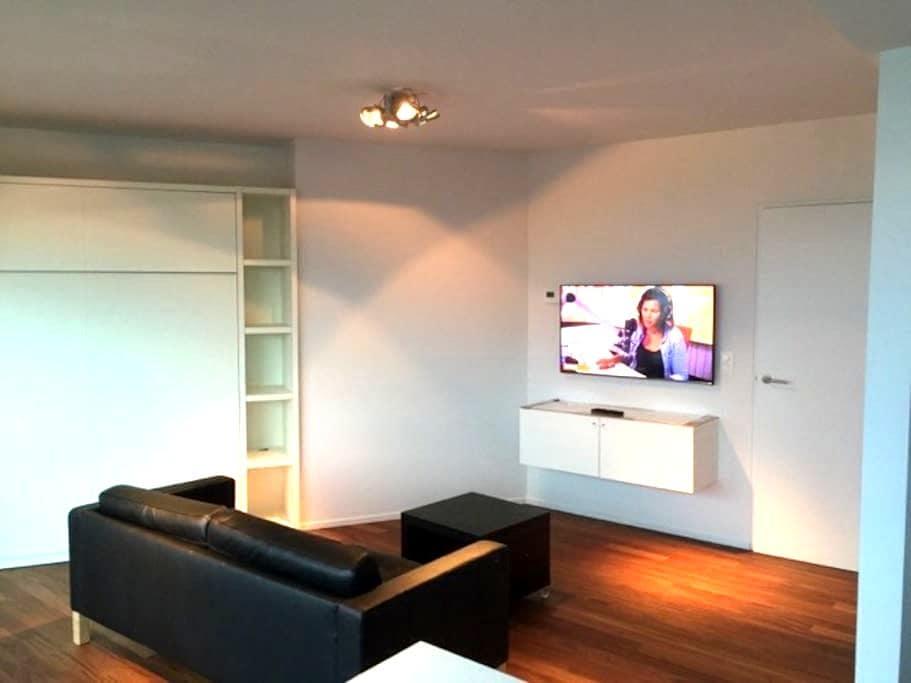 Cosy Studio /zonnig zeezicht /kijk op hinterland - Oostende - Apartment