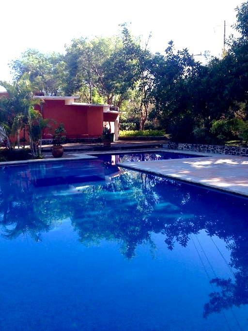 Tropical romance! - Jiutepec