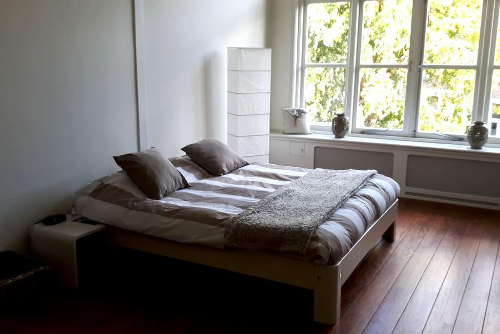 Dans belle maison du début du siècle... - Rijswijk - Huis