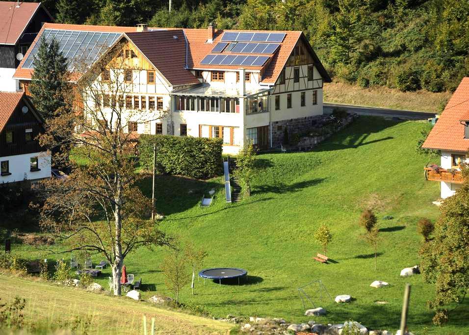 4 Sterne Luxus Ferienwohnungen im Nationalpark - Forbach - Apartment