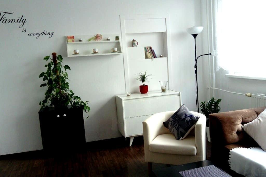 Ostrava Aréna rent flat 2+1 50m2 - Ostrava - Apartment
