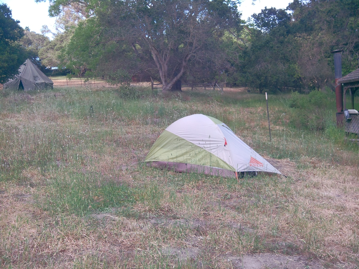 tent or tipi camping