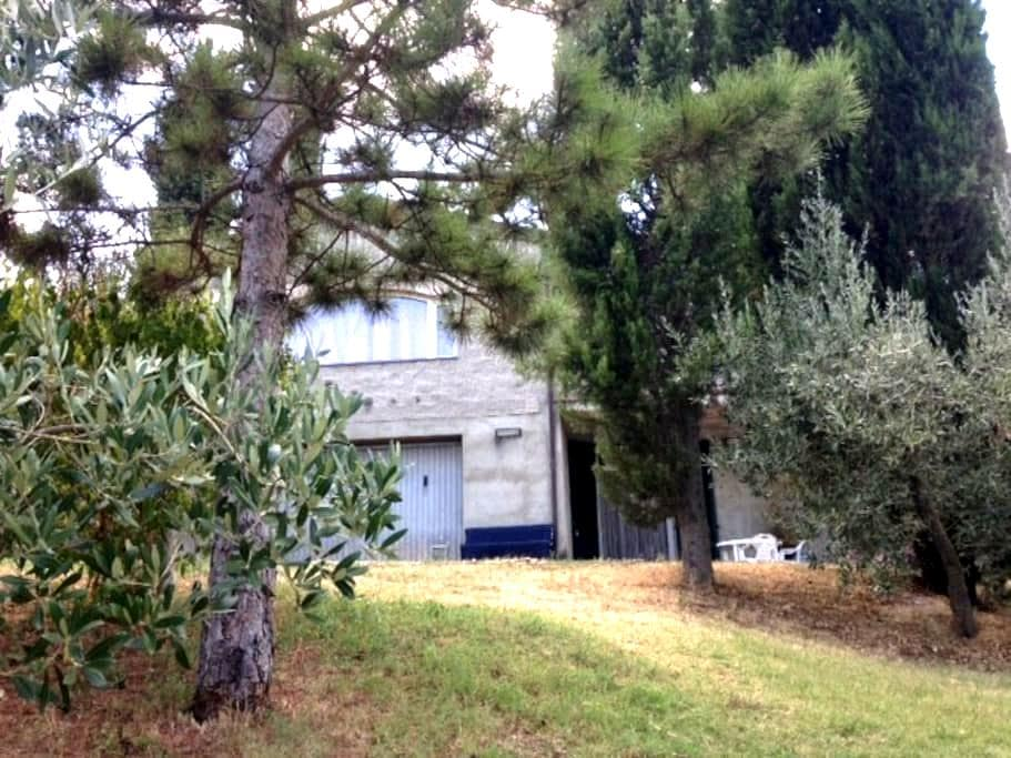 Apartment in the Tuscan countryside - Chiassa Superiore - Leilighet
