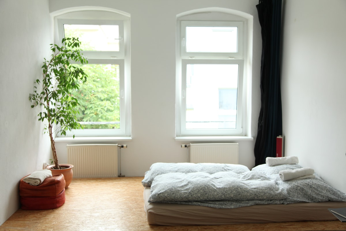 Large Bedroom with two windows facing East