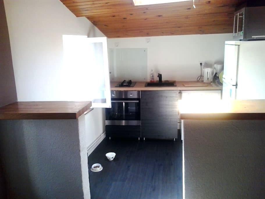 appartement F2 centre riom - Riom - Lejlighed