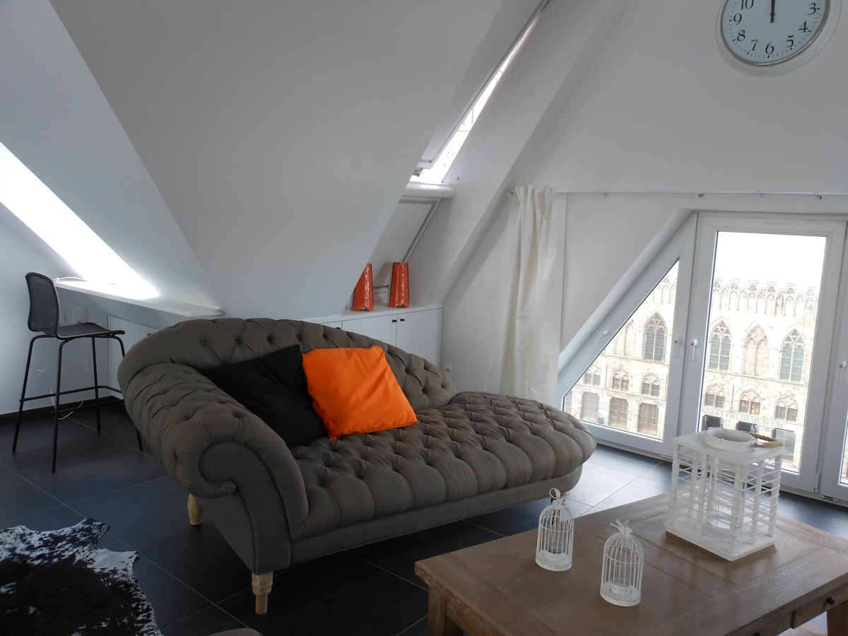 Penthouse with a view on the square of ypres lofts for rent in