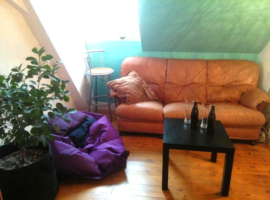1 bedroom apt, center of Mulhouse, equiped kitchen - ミュルーズ