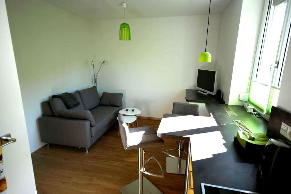 Ruhiges Apartment in Leoben - Leoben - อพาร์ทเมนท์