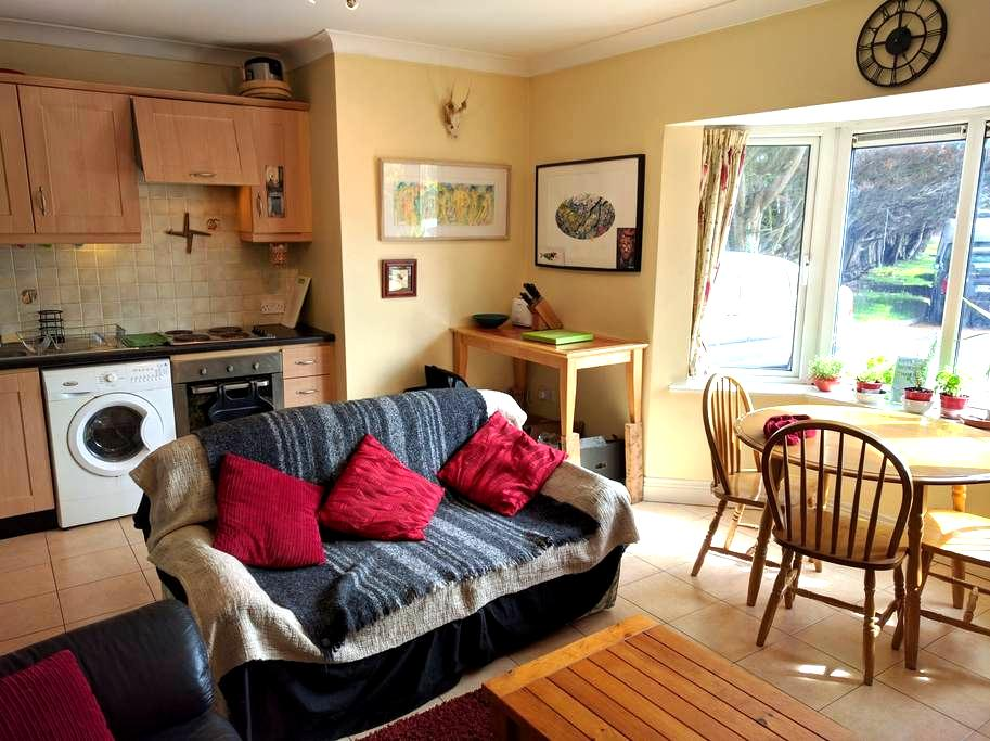 Ground Floor Claddagh Apartment - Galway - Huoneisto