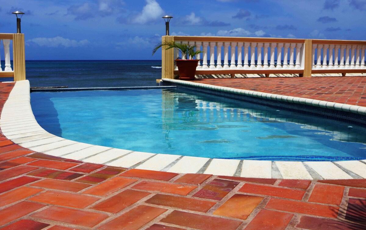 Beach House with Infinity Pool