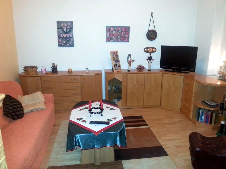 Ferienwohnung in Aue Alberoda - Aue - Apartament