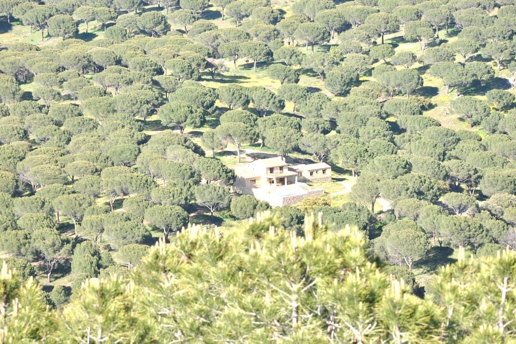 Spectacular estate close to Madrid  - Cebreros