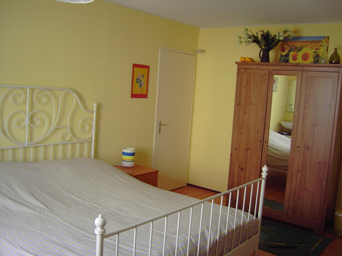 Room near Airport + travel service