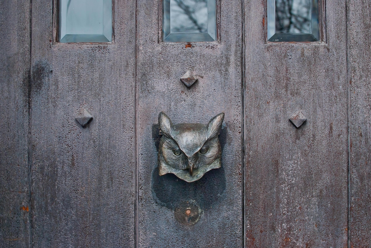 My great horned owl, front door knocker. Overlooking the Twenty Valley where the 2 wild great horned owls fly in from - at dusk!
