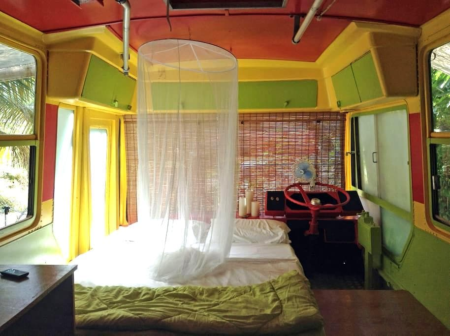 Eco StayBus, 'Glamping in Paradise' - Bathsheba - その他