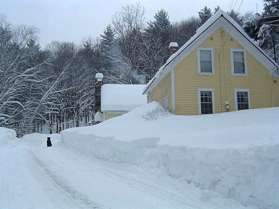 Vermont Old Farmstead - Jamaica - Rumah
