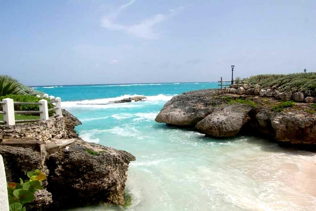 LIONHORSE  HOLISTIC RETREAT - St. Philip