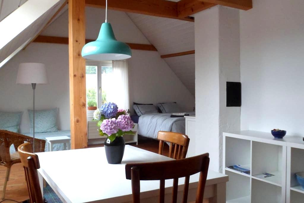 Grosszügig, eigenes Bad, Frühstück - Luzern - Bed & Breakfast