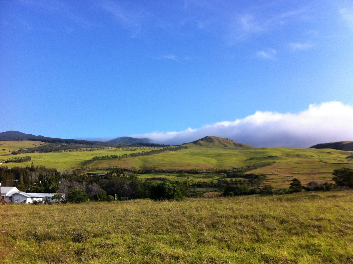 view from Kawaihae road enroute to town
