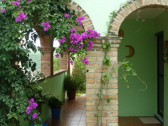 Home near Museo de las Momias