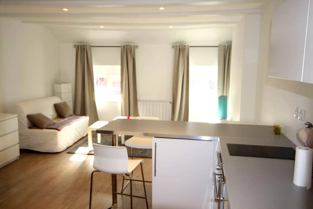 Studio Le Cosy, centre historique - Annecy - Apartment