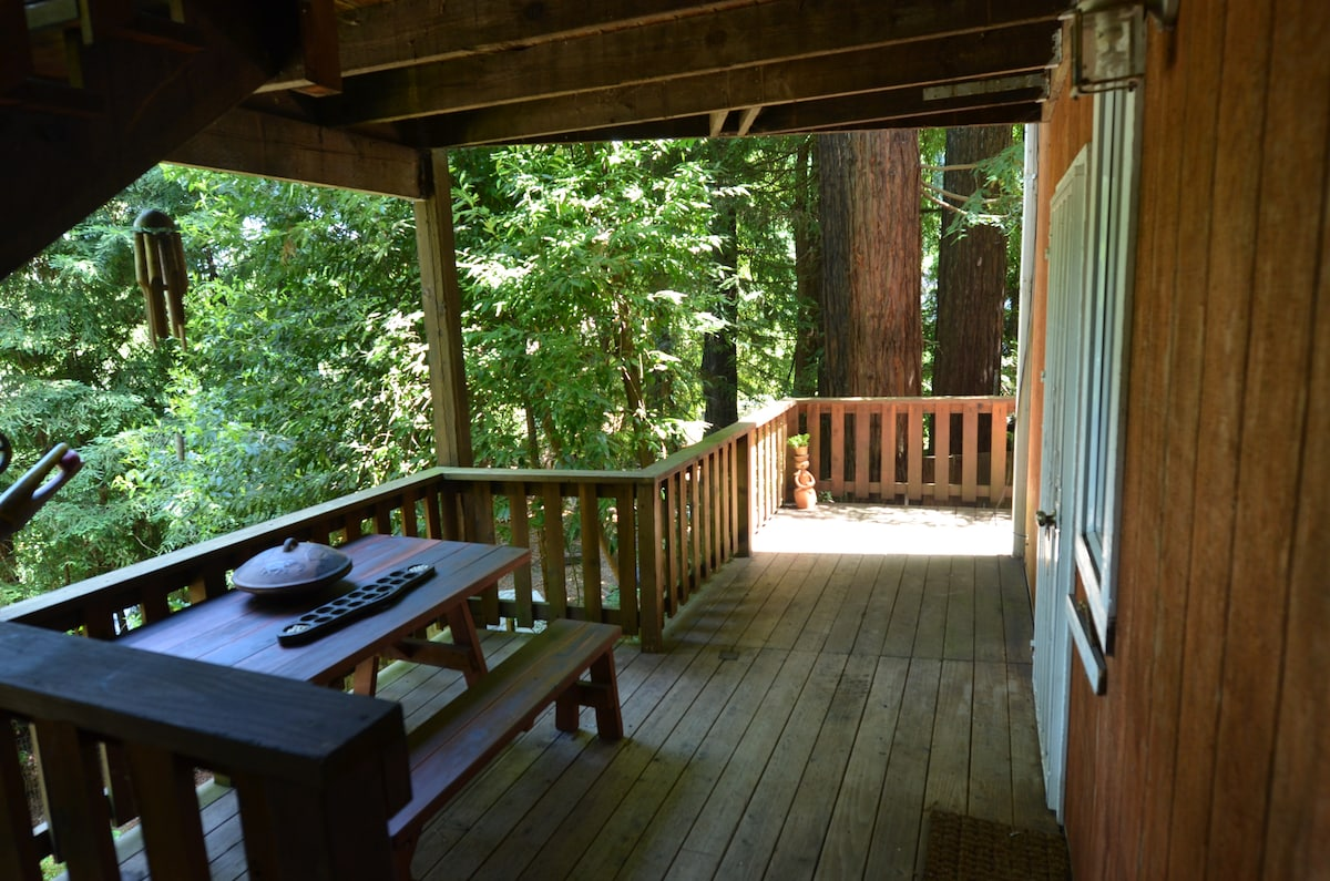 Studio Hideway in the Redwoods