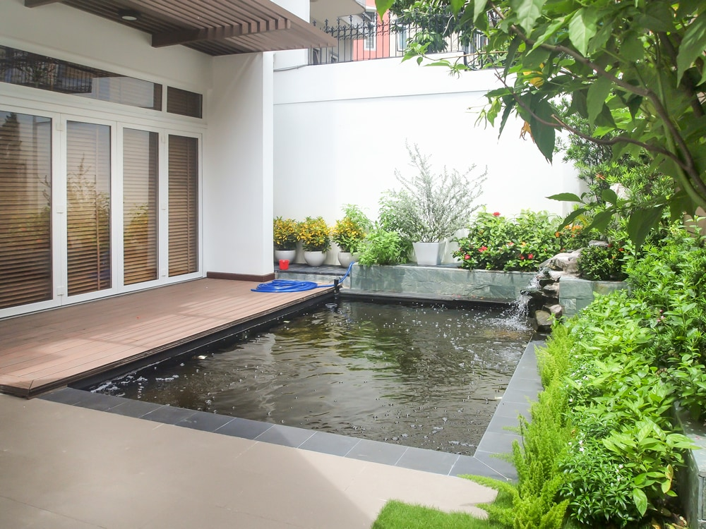 Relaxing Fish Pond