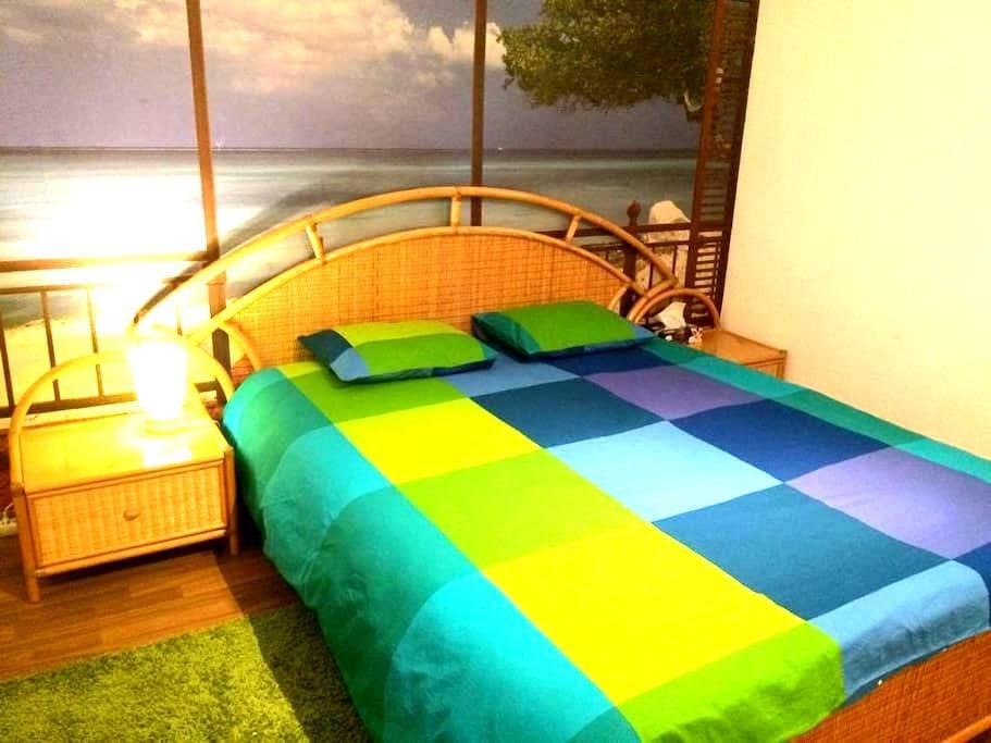 Belle chambre avec parking privé au centre Morges - Morges - 一軒家