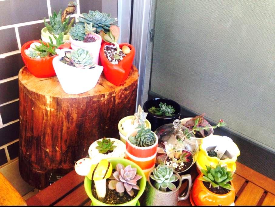 Spring in all season apartment - Killara