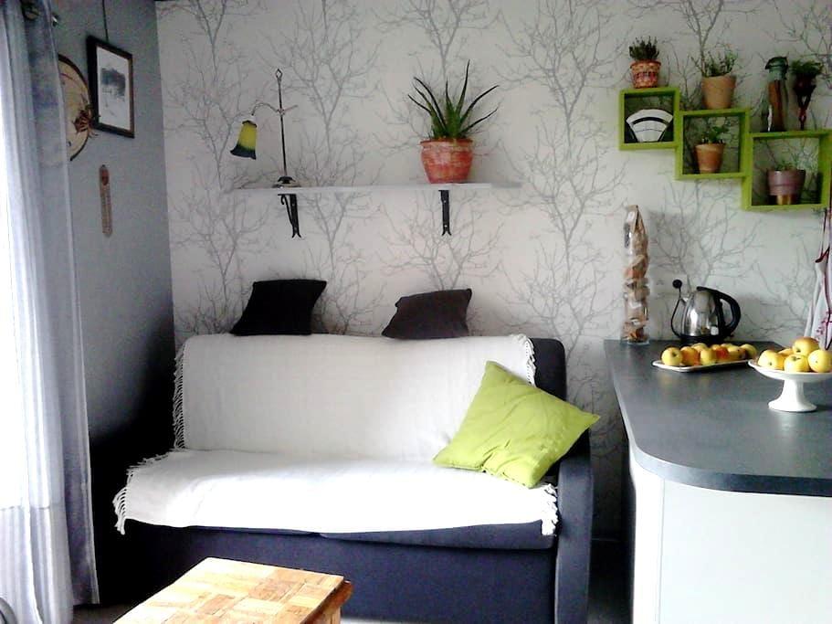 studio lac de Gérardmer - Gérardmer - Apartemen