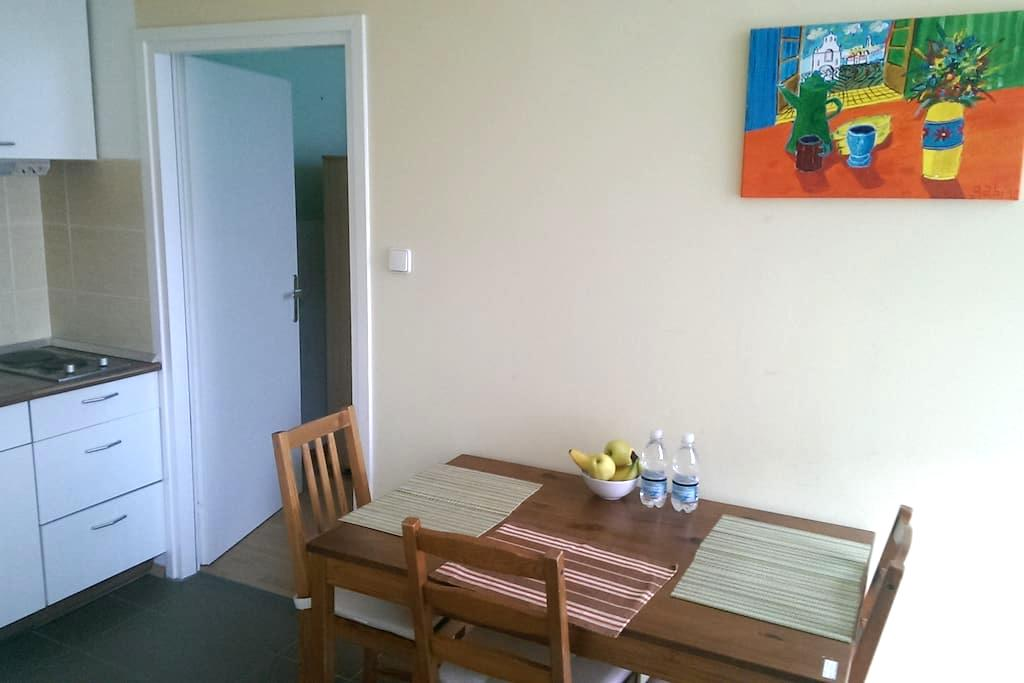 Nice apartment in city center. - Maribor - Daire