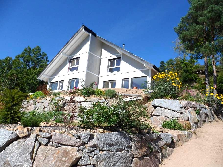 GITE EDELWEISS - Vue magnifique - Breitenbach-Haut-Rhin - Apartament