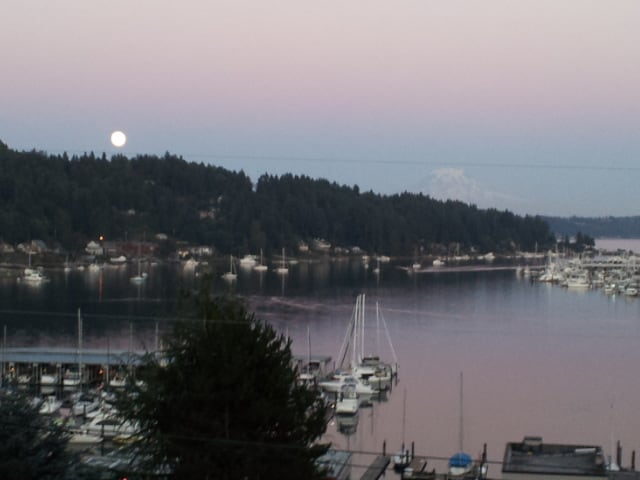Gig Harbor -- Room with a View#1