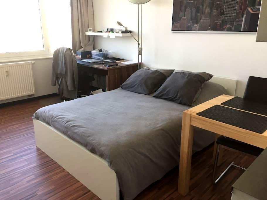 Cosy 1 Room flat in Münster - Münster - Apartment
