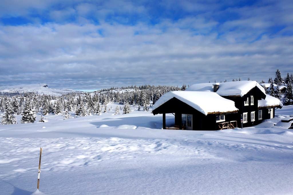 Skeikampen-ledig vinterferien uke 9 - Skeikampen - Cottage