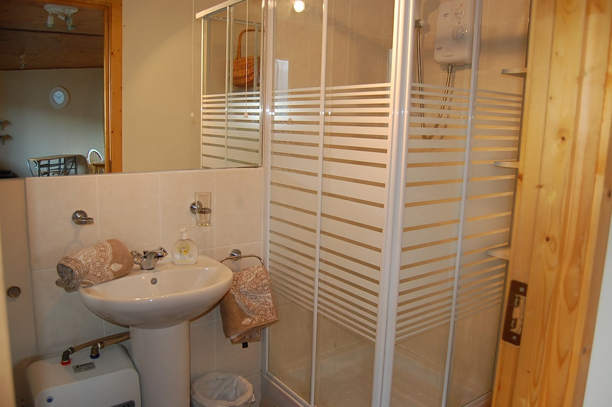 Bathroom with electric power shower, toilet and sink