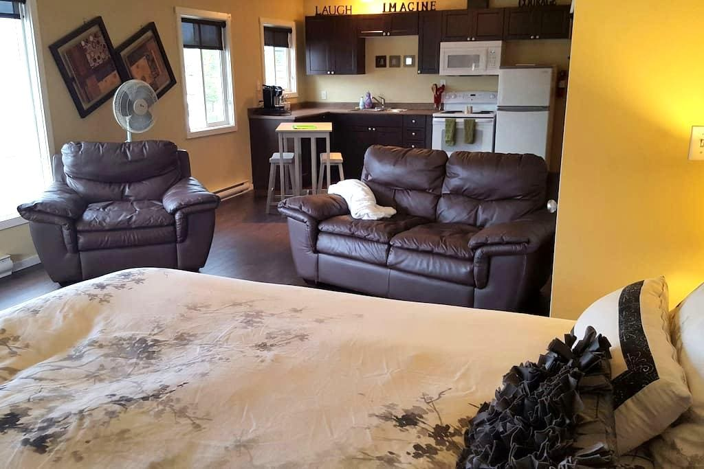 Superb Studio in Heart of Smithers - Smithers - Apartment