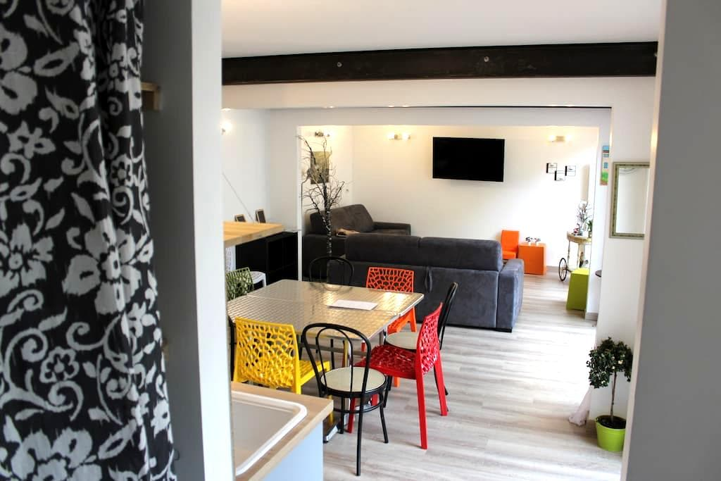 House parking terrace Reims center 10 people - Reims - House