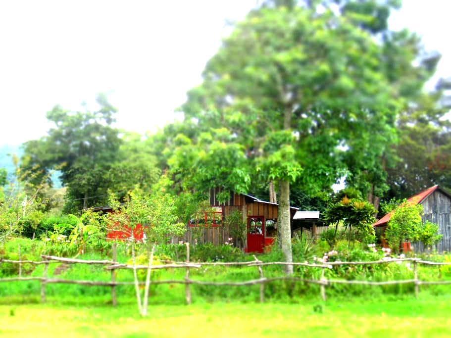 Country house in Horse Guest Ranch - San Cristóbal de las Casas - Haus