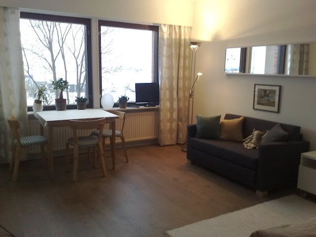 The livingroom corner of this comfy studioapartment. Outside the frozen sea with ships sailing for Sweden and Estonia.