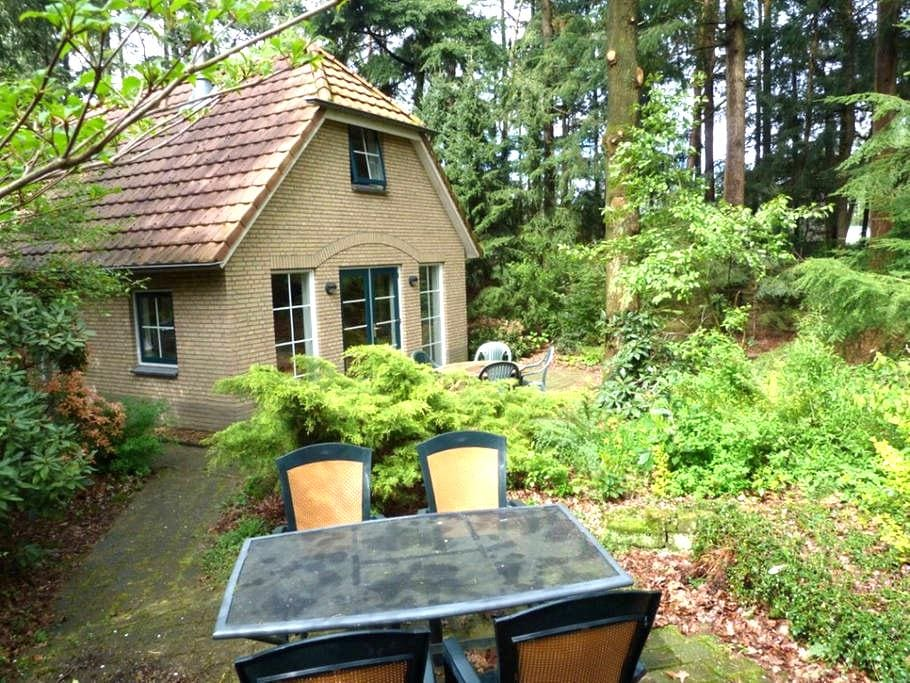 Forest Cottage garden and terrace - Lunteren