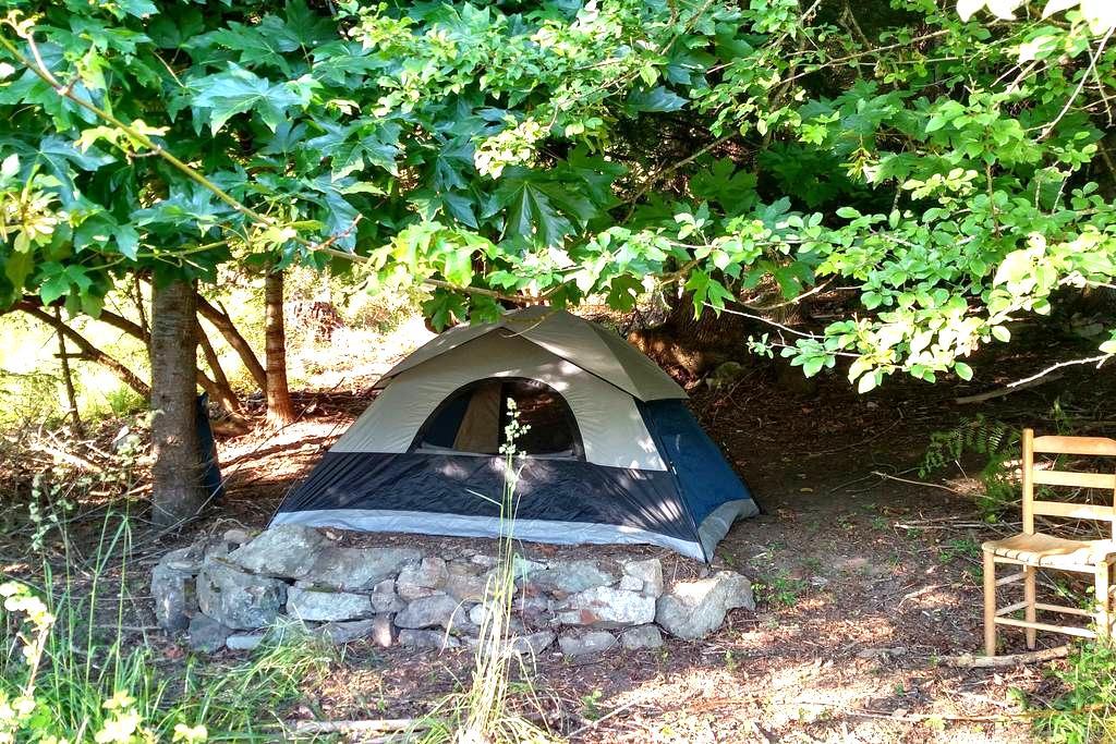 7'x8' Minimalist Tent w/o bedding - Deer Harbor