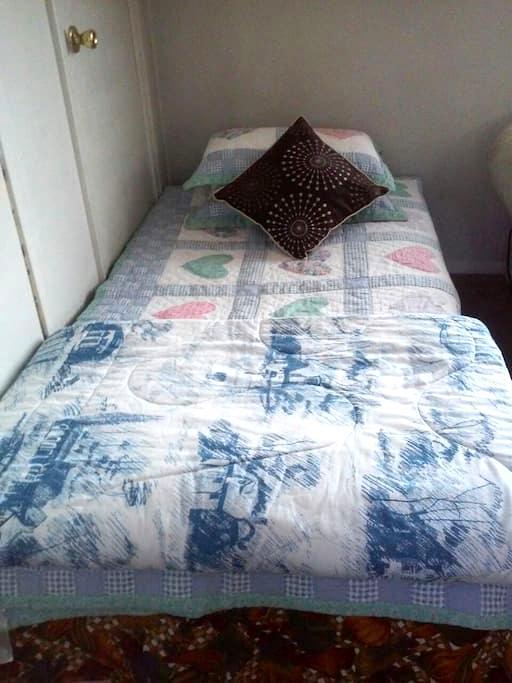 Comfy bed in living room - Overland Park - Apartament