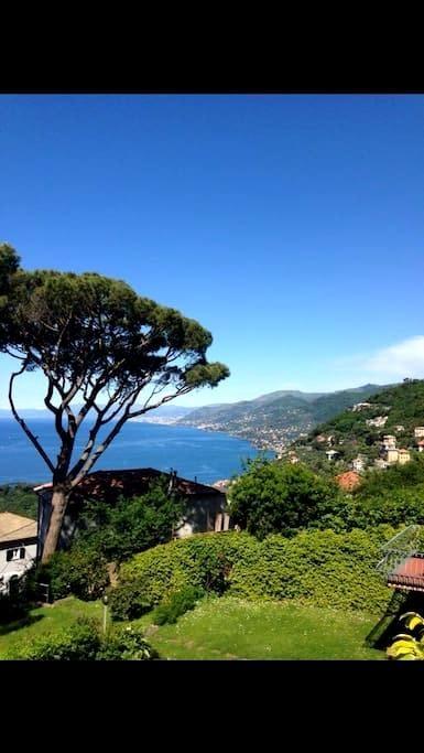 Appartamento accogliente vista mare - Camogli