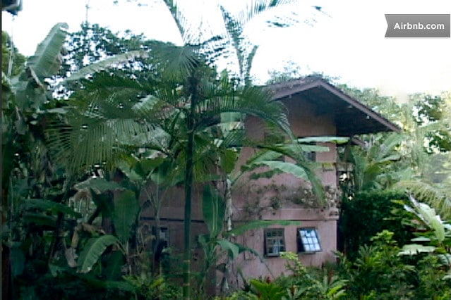 100 meters from the beach, tropical garden and forest!