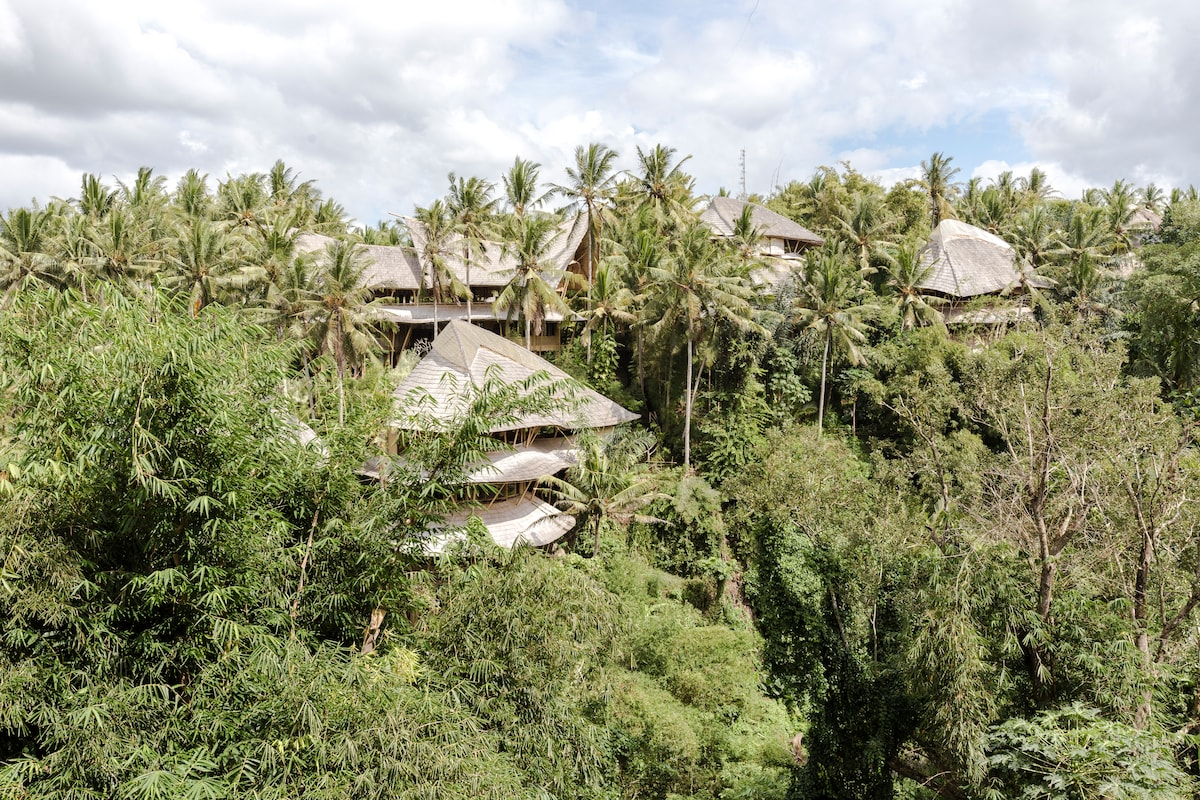 Green Village sits in  a pristine environment on the Ayung River Valley