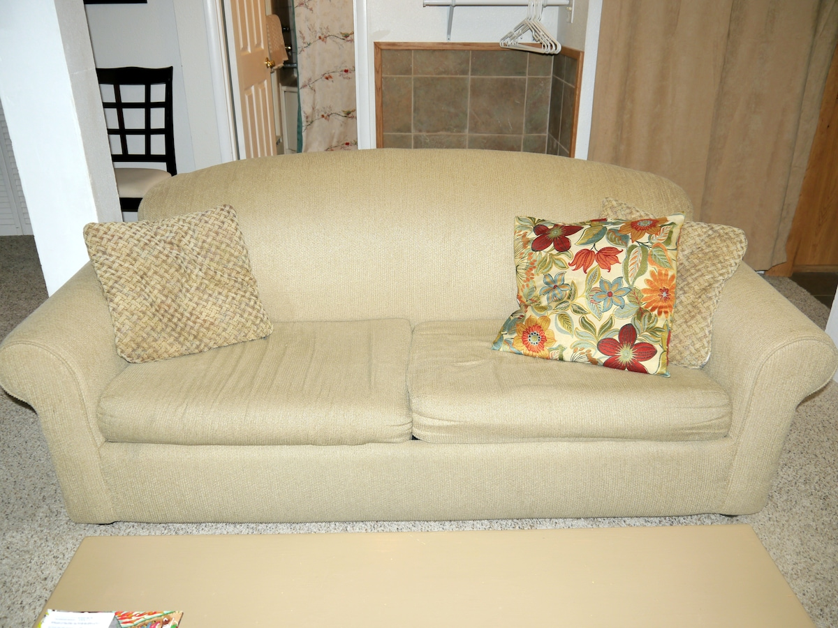 Sofa can be pulled out into a bed.