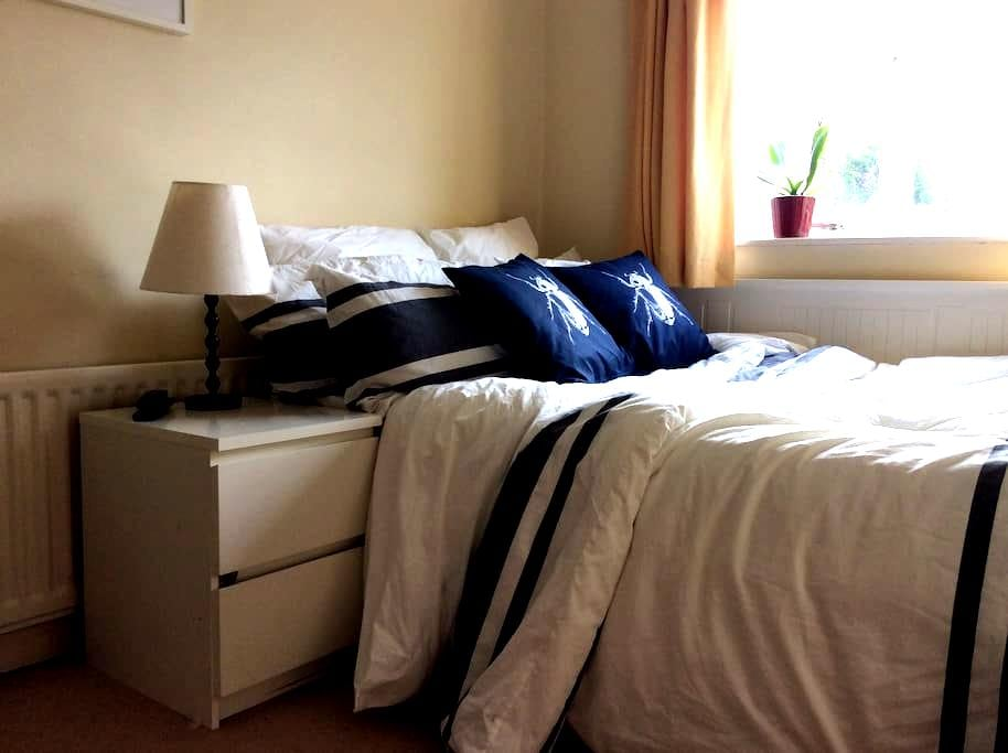 Comfy double rooms in a lovely area  /back room - Bristol - Ev